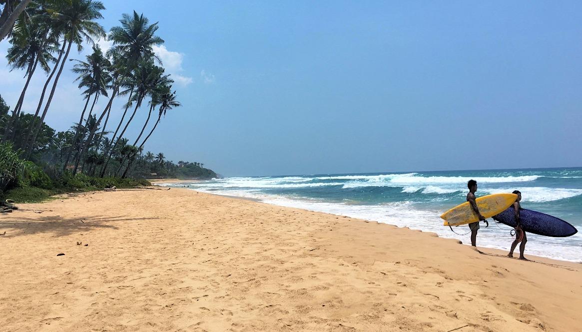 Sri Lanka Surf Spots - Coconuts