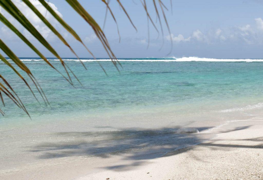 Surf Maldives Cokes Thulusdhoo