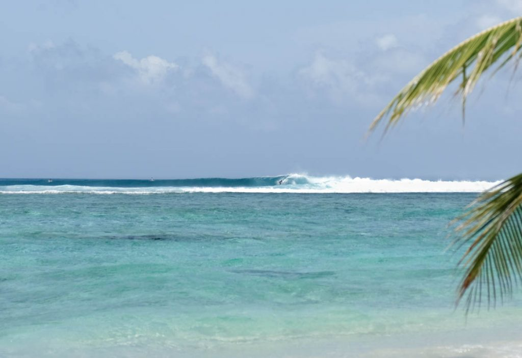 Surf the Maldives Cokes Surf Spot Thulusdhoo