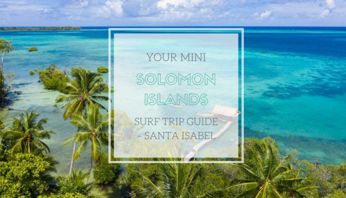 Flag of The Fiji Islands Mens Modern Beach Shorts Surf Board Holiday Swim Trunks